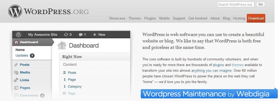 Wordpress Maintenance and Management
